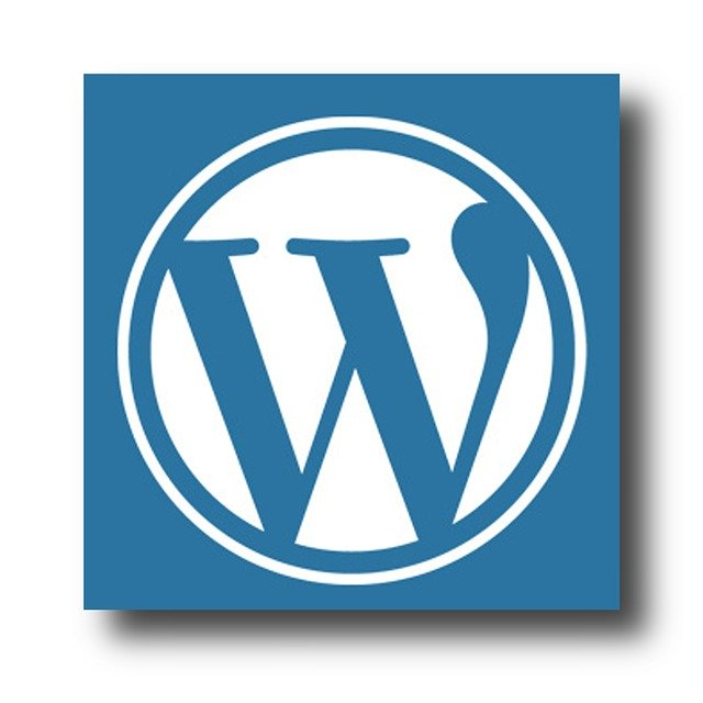 for_tricks_about_wordpress_check_this_article_out.jpg